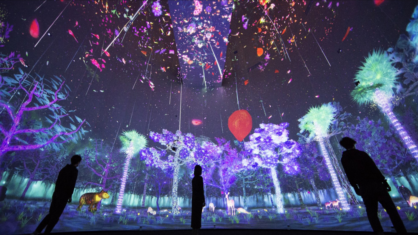 """""""Story of the Forest"""" at TeamLab"""